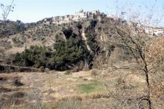 Camí de Sant Jaume
