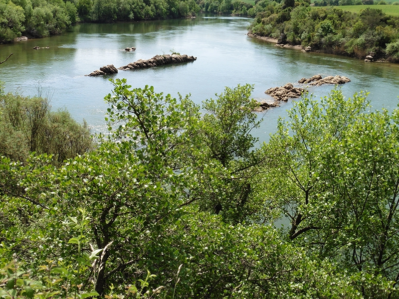 hacia Miranda de Ebro.