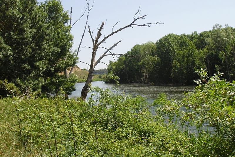 Reencuentro con el Ebro.