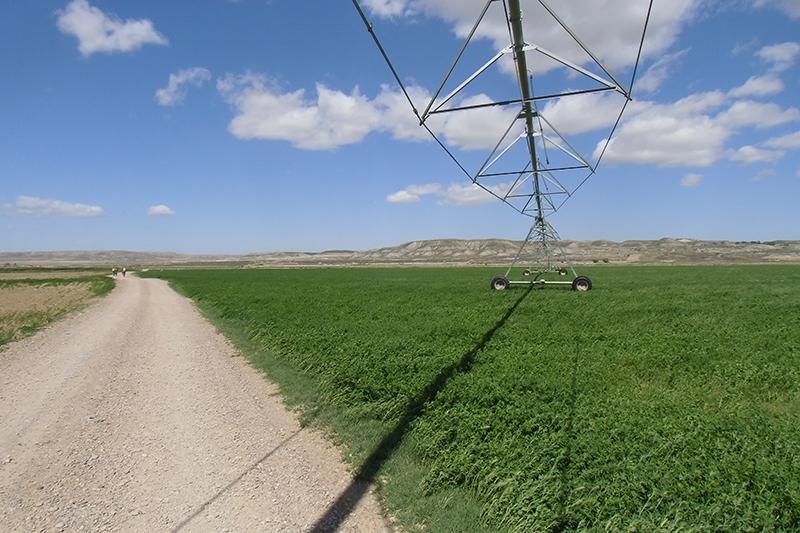 A  Velilla de Ebro.