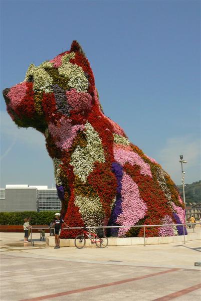 084-puppy