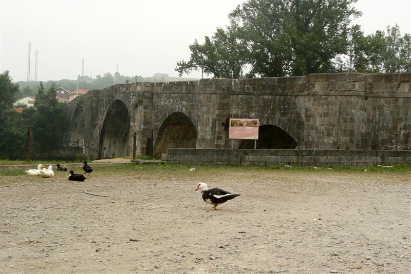 144-puente-arce