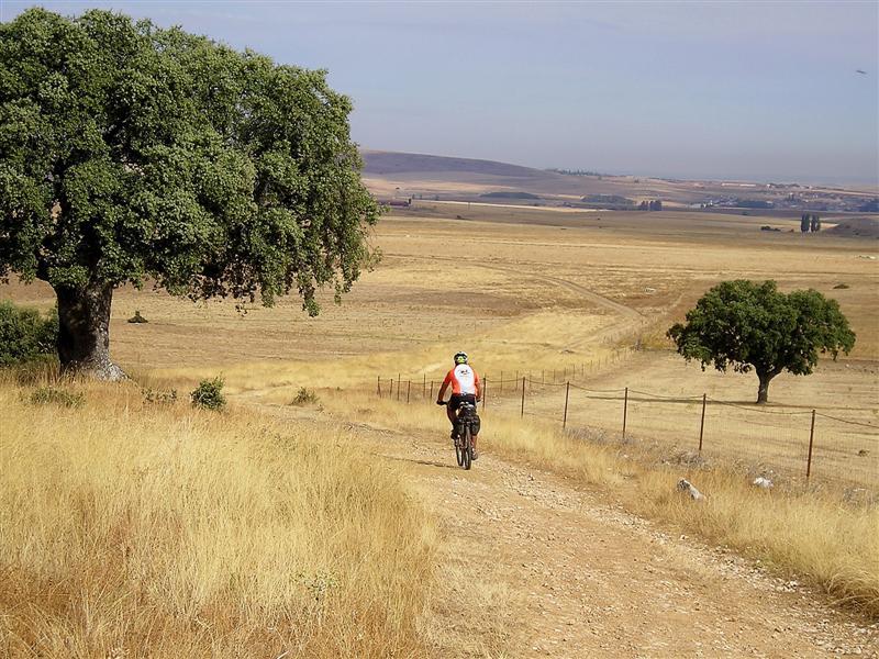 Camino a Salamanca
